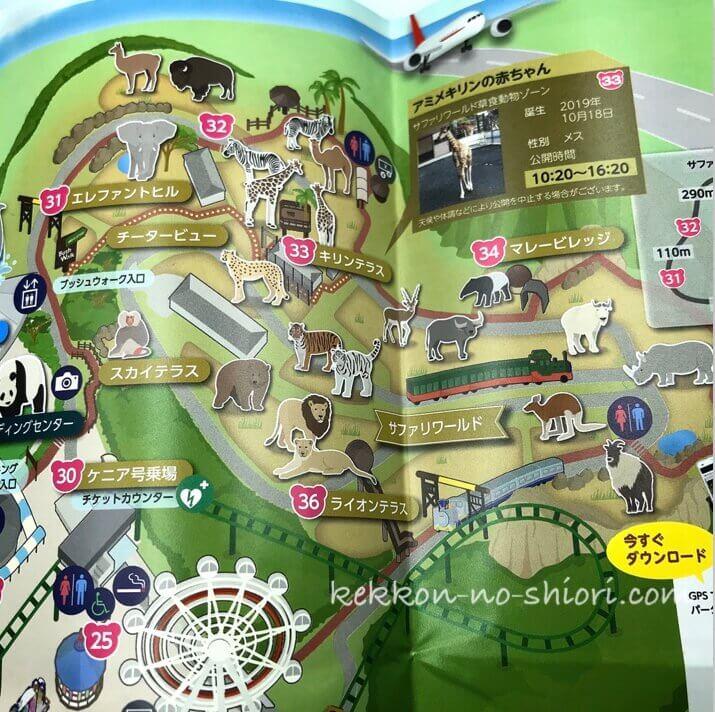 アドベンチャーワールド サファリワールド 地図