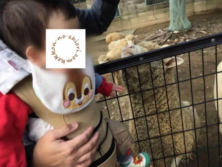 抱っこひも ヒップシート 動物園